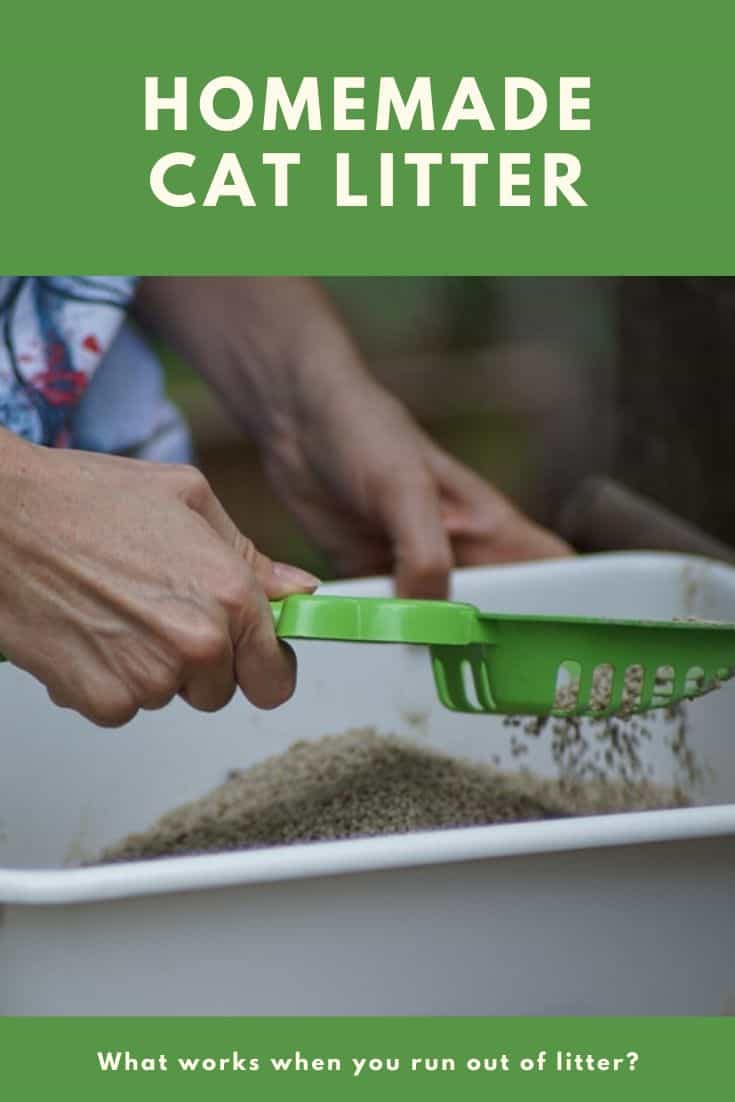 Homemade Cat Litter Alternative When You Run Out